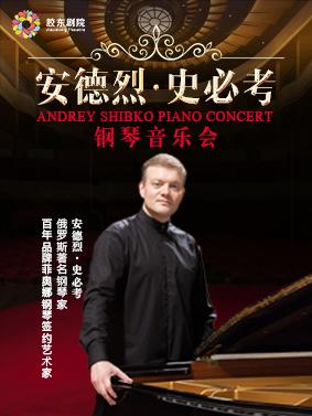 《安德烈·史必考钢琴音乐会》